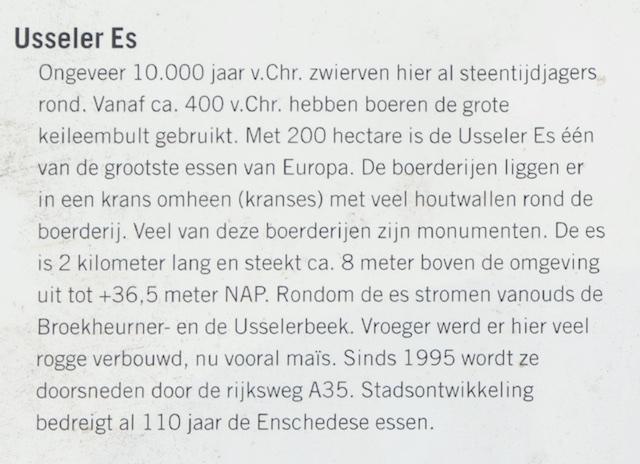 5. Info detail