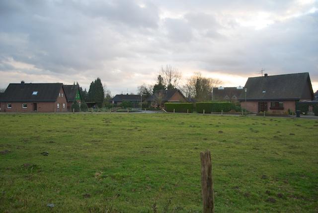 24. Grunewald