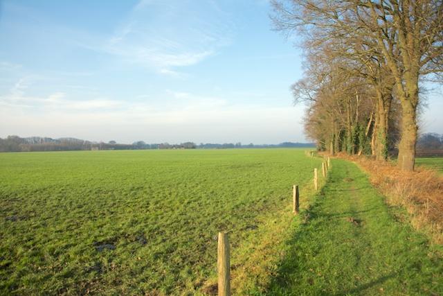15. Landbouwgebied