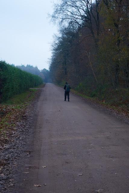 48. Zandweg