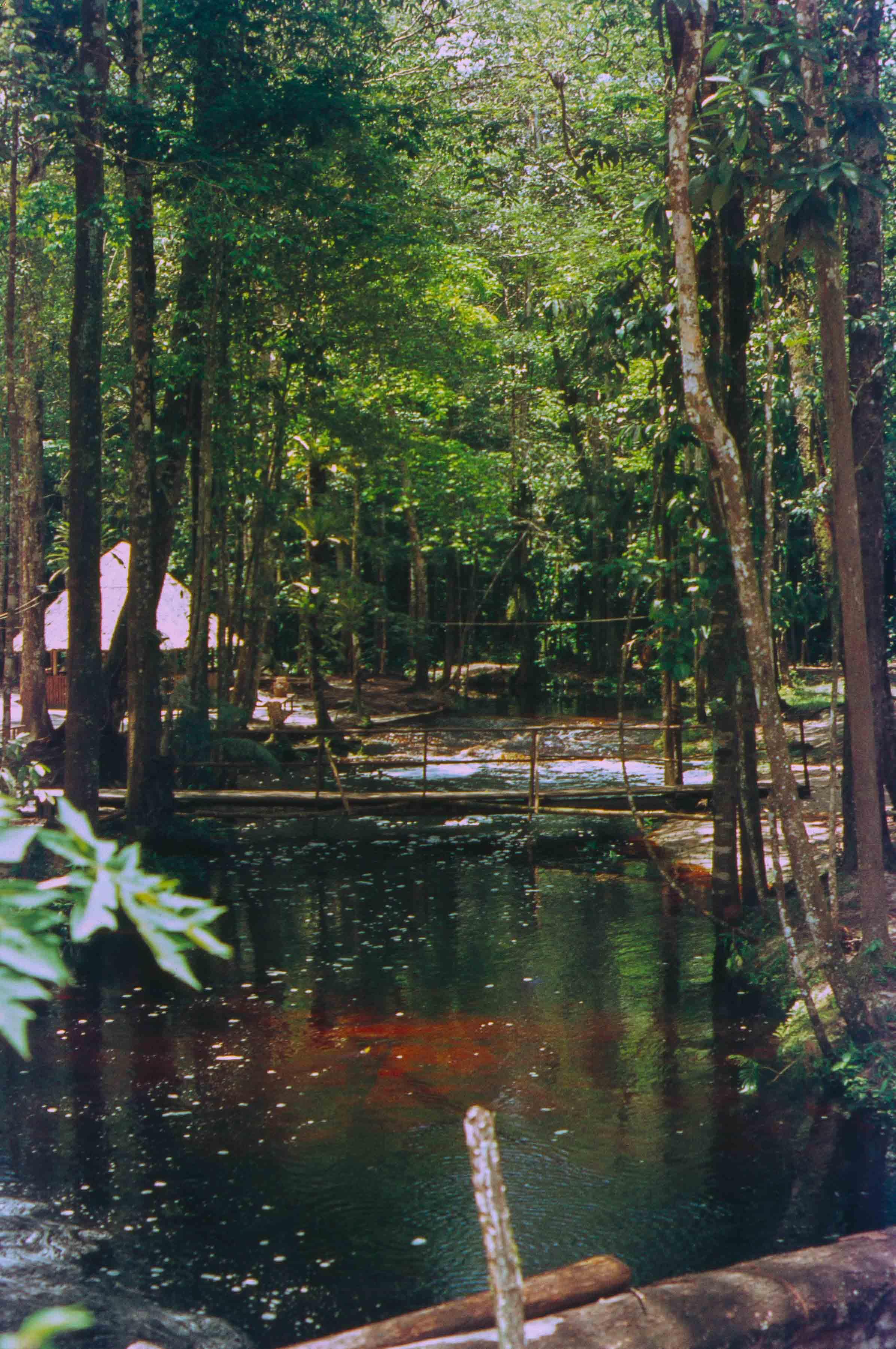 102. Suriname
