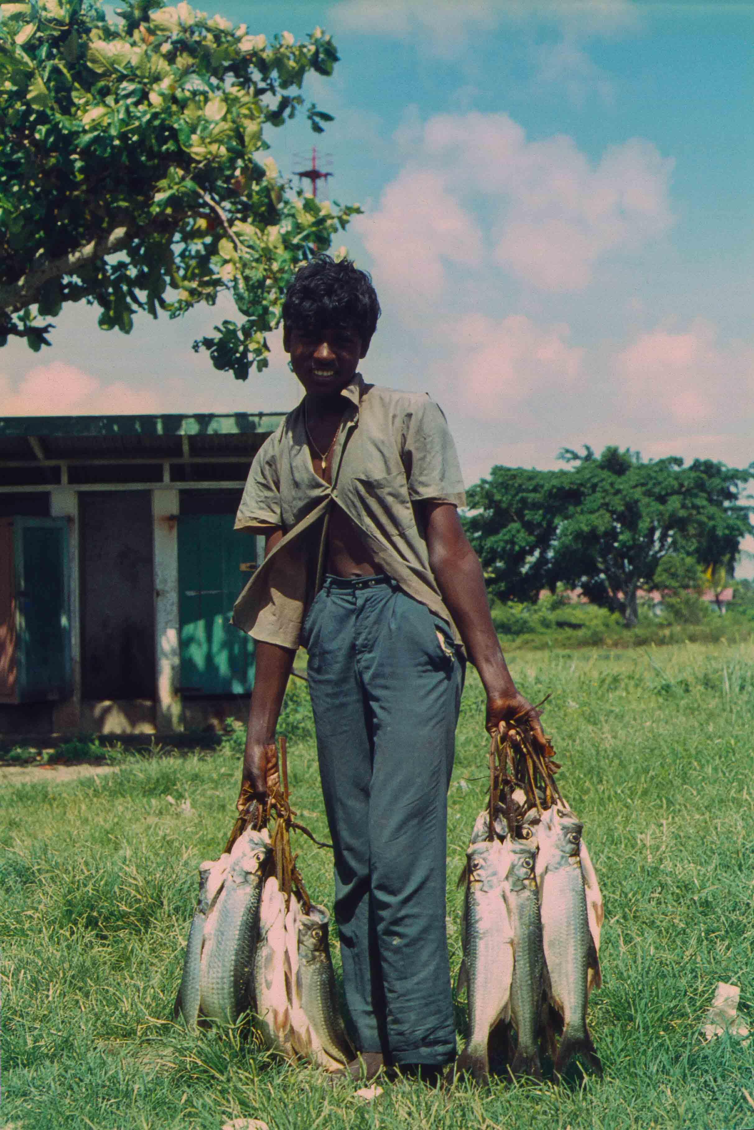 342. Suriname
