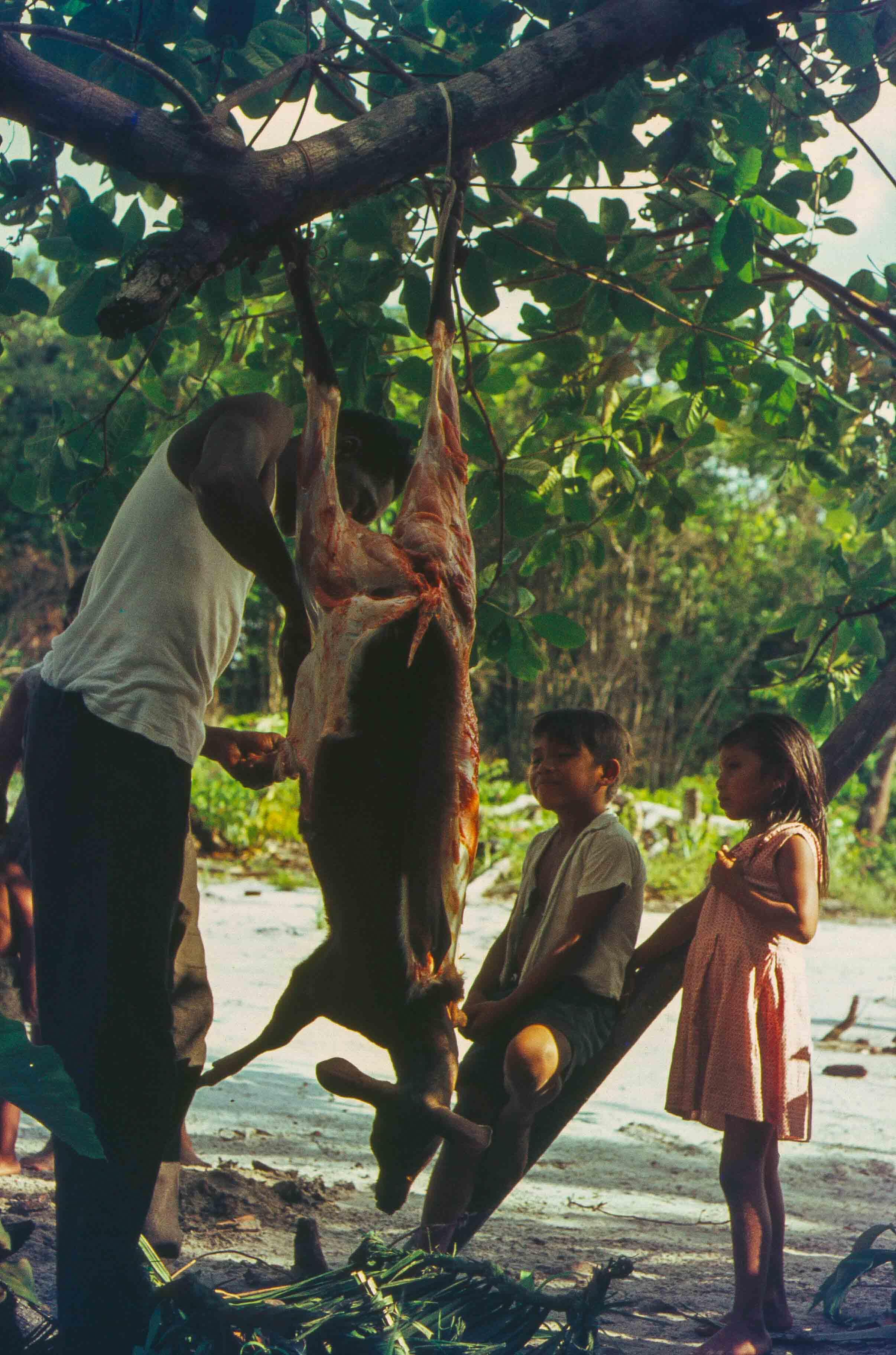 358. Suriname