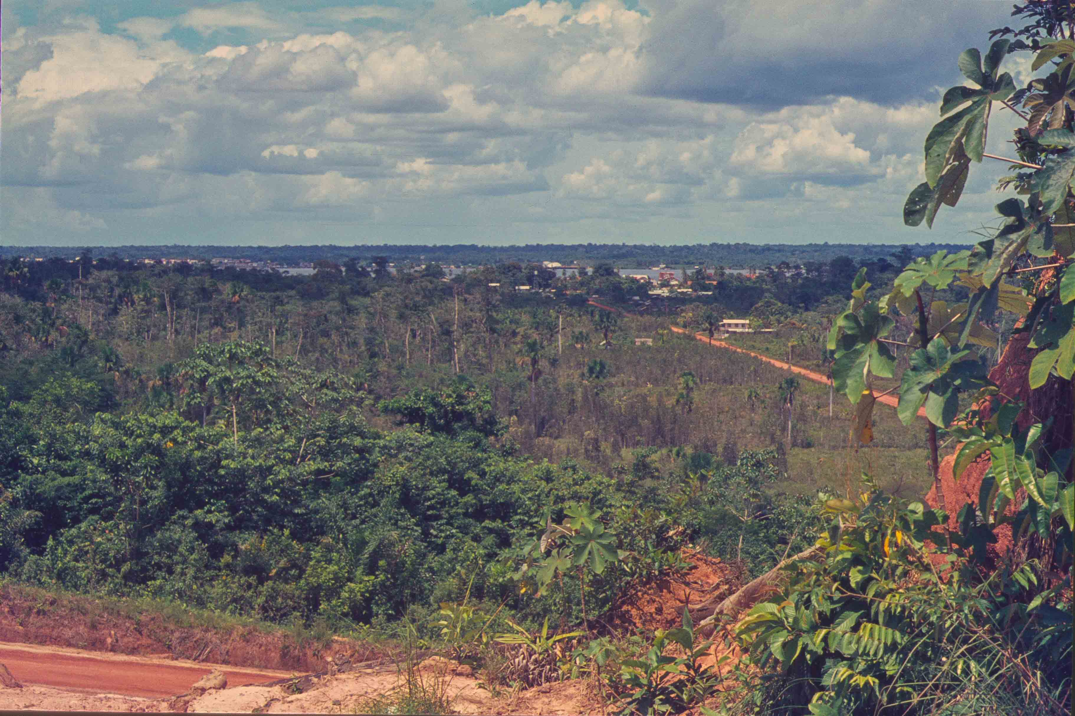 368. Suriname