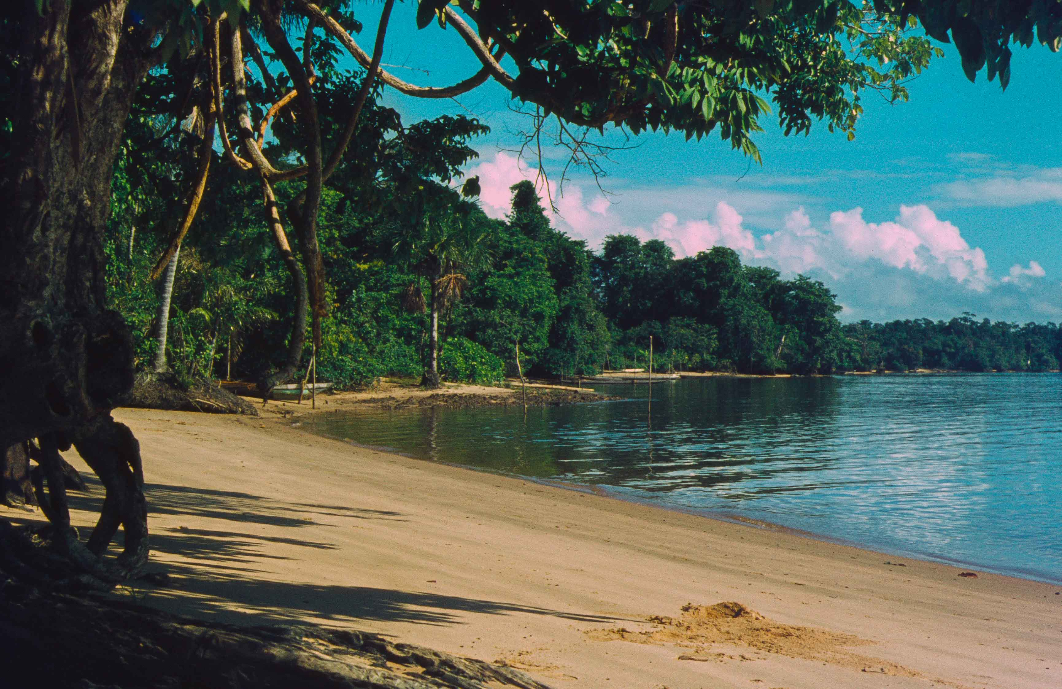 391. Suriname