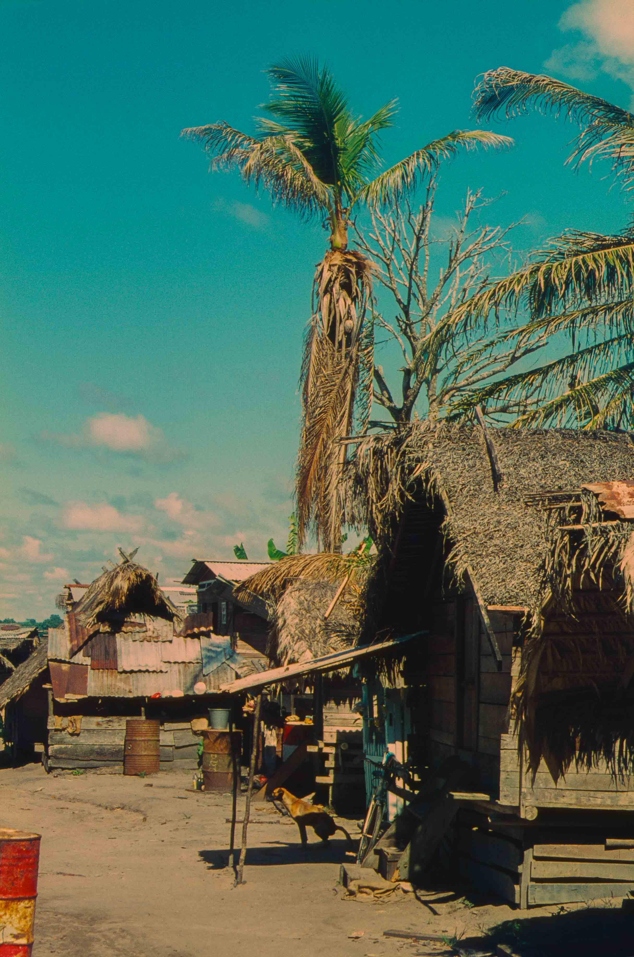 438. Suriname