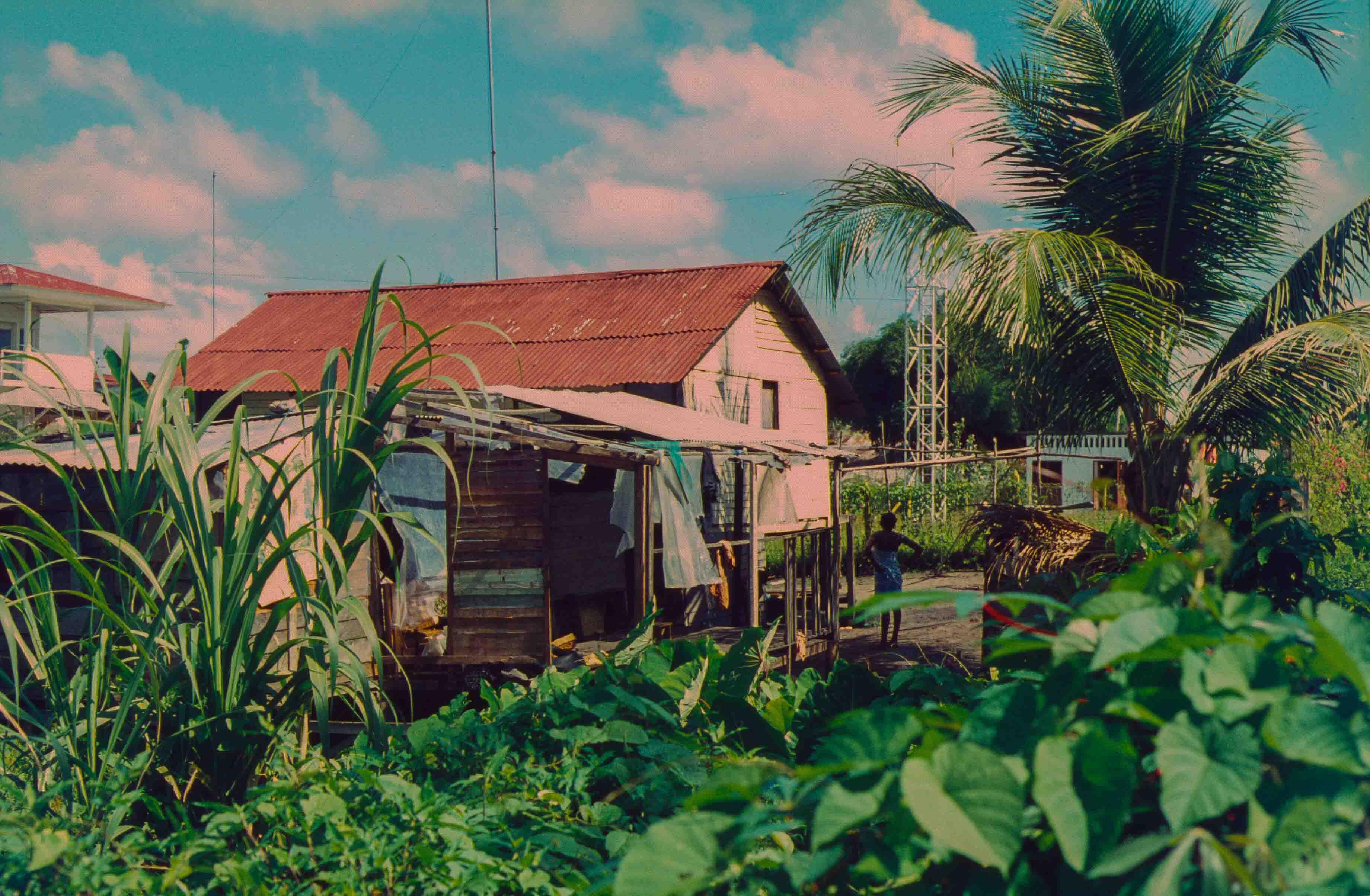 439. Suriname