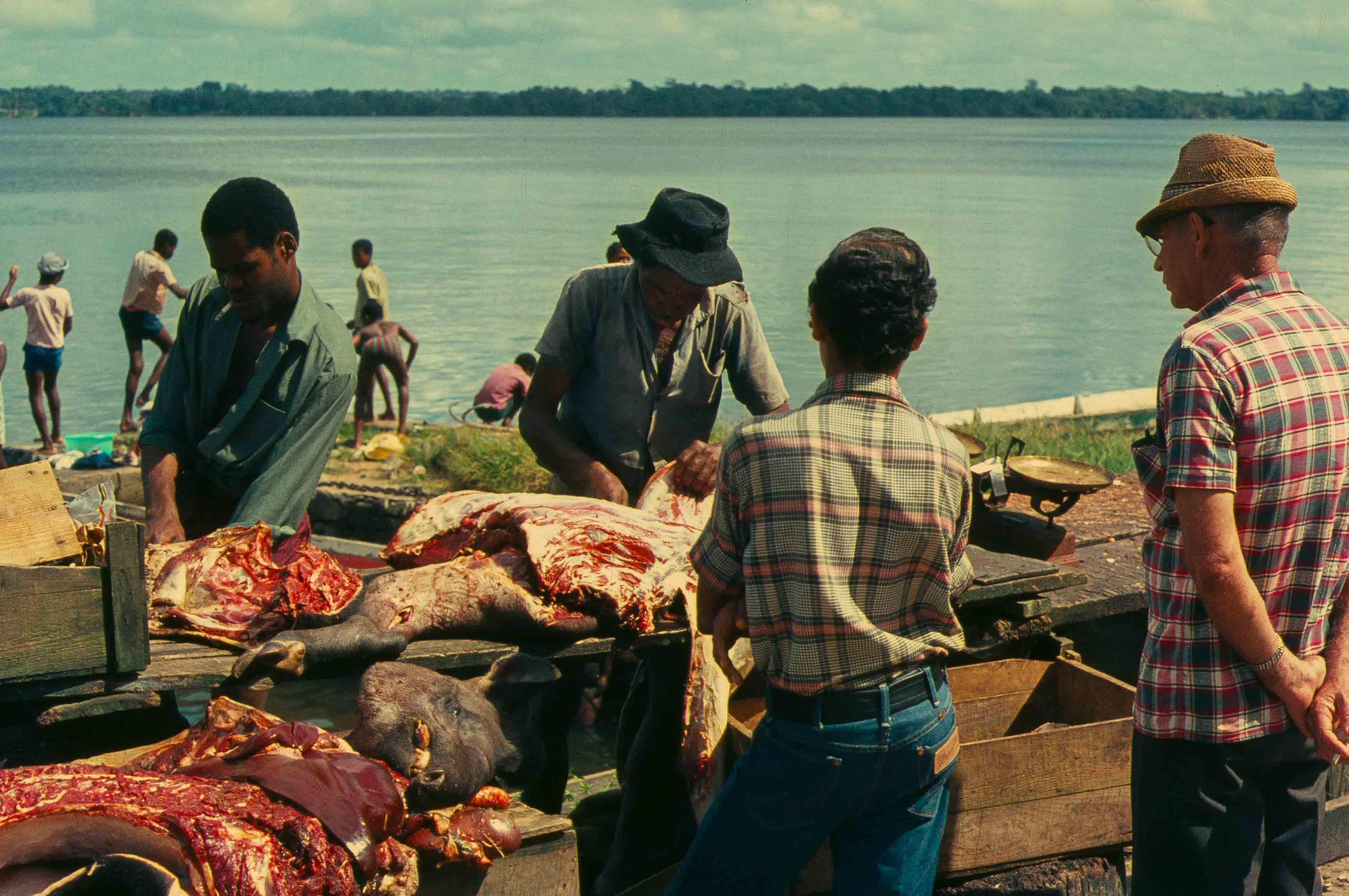 444. Suriname
