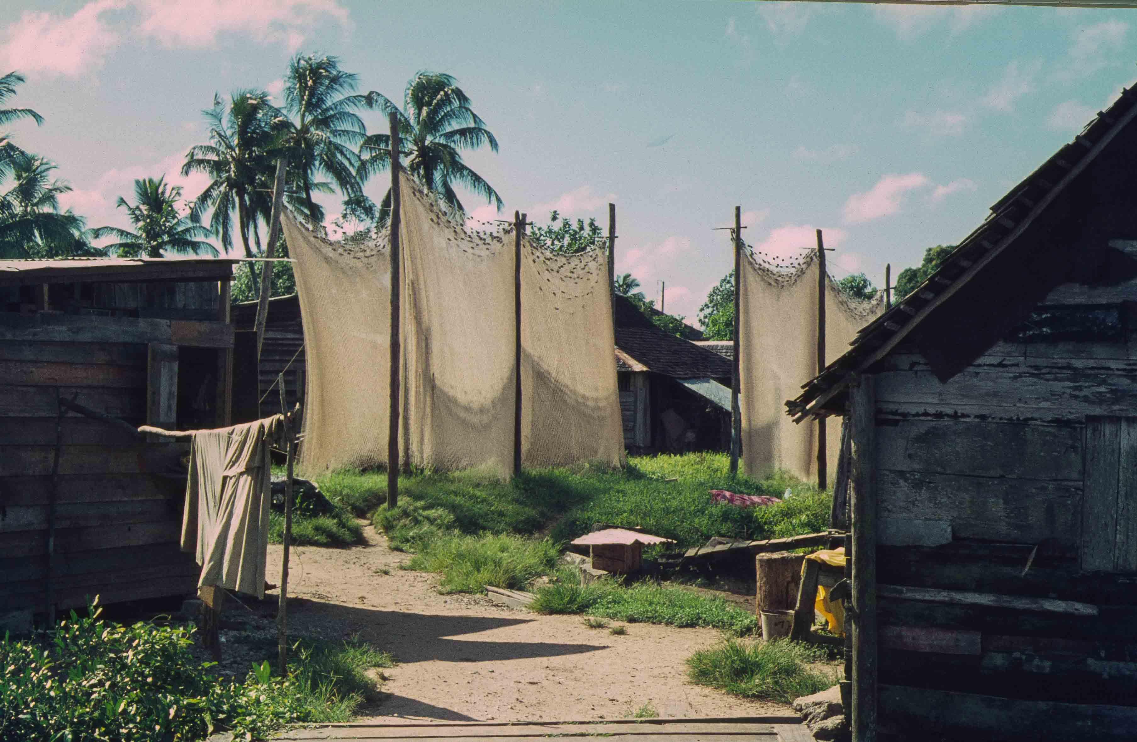 451. Suriname