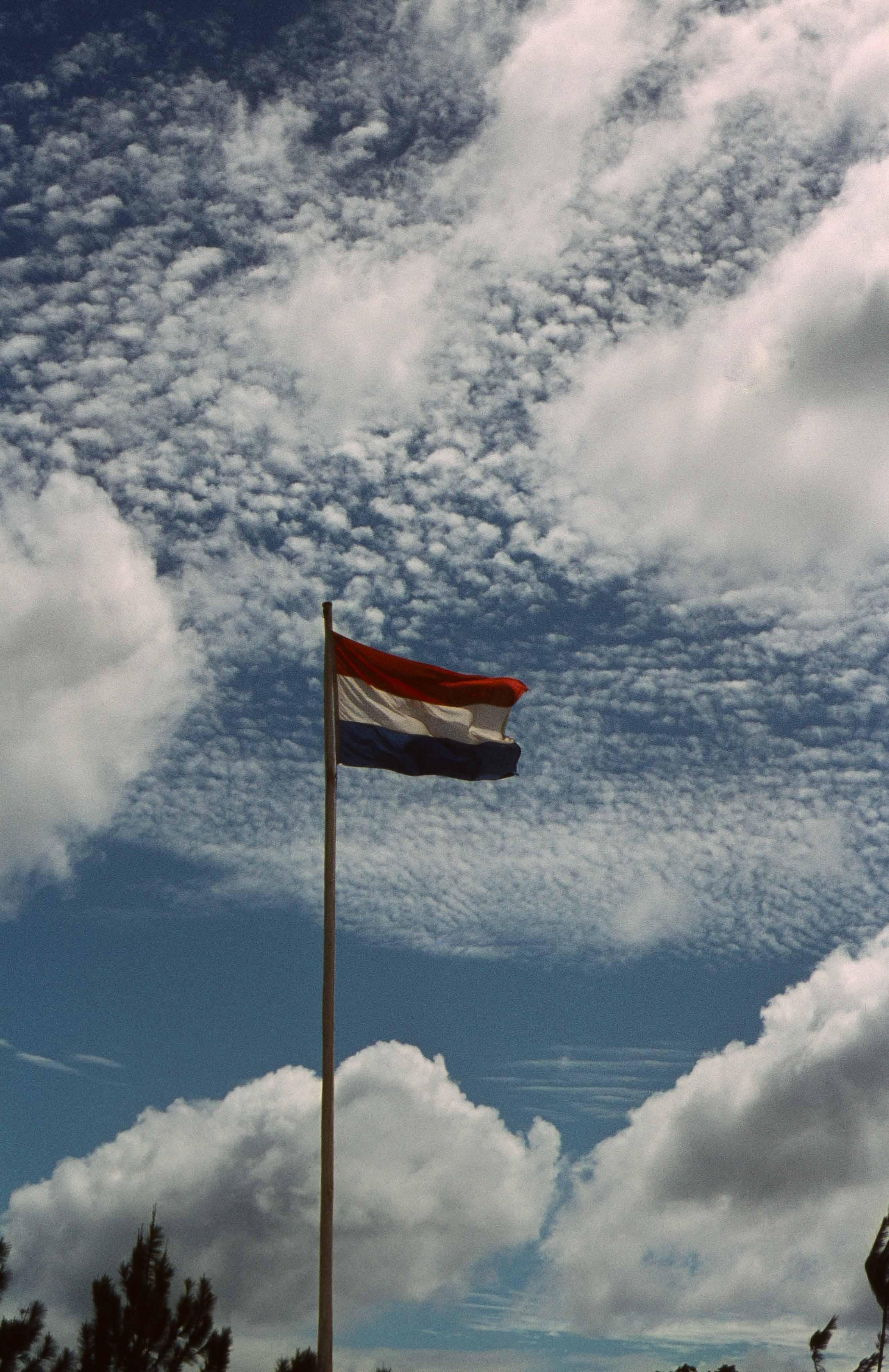 503. Suriname