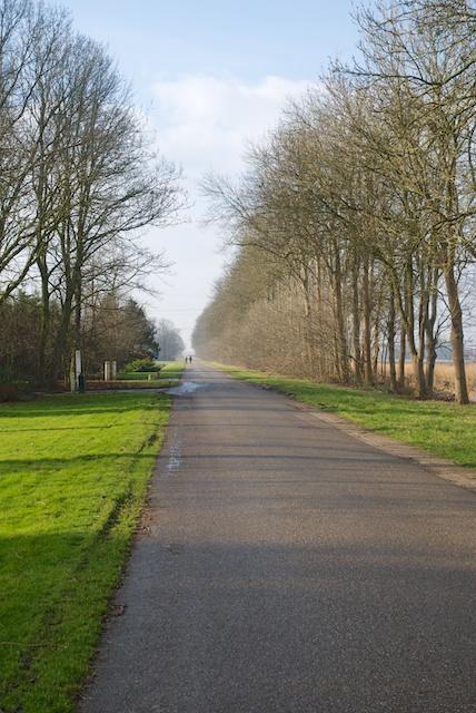 52. Mammouthweg*