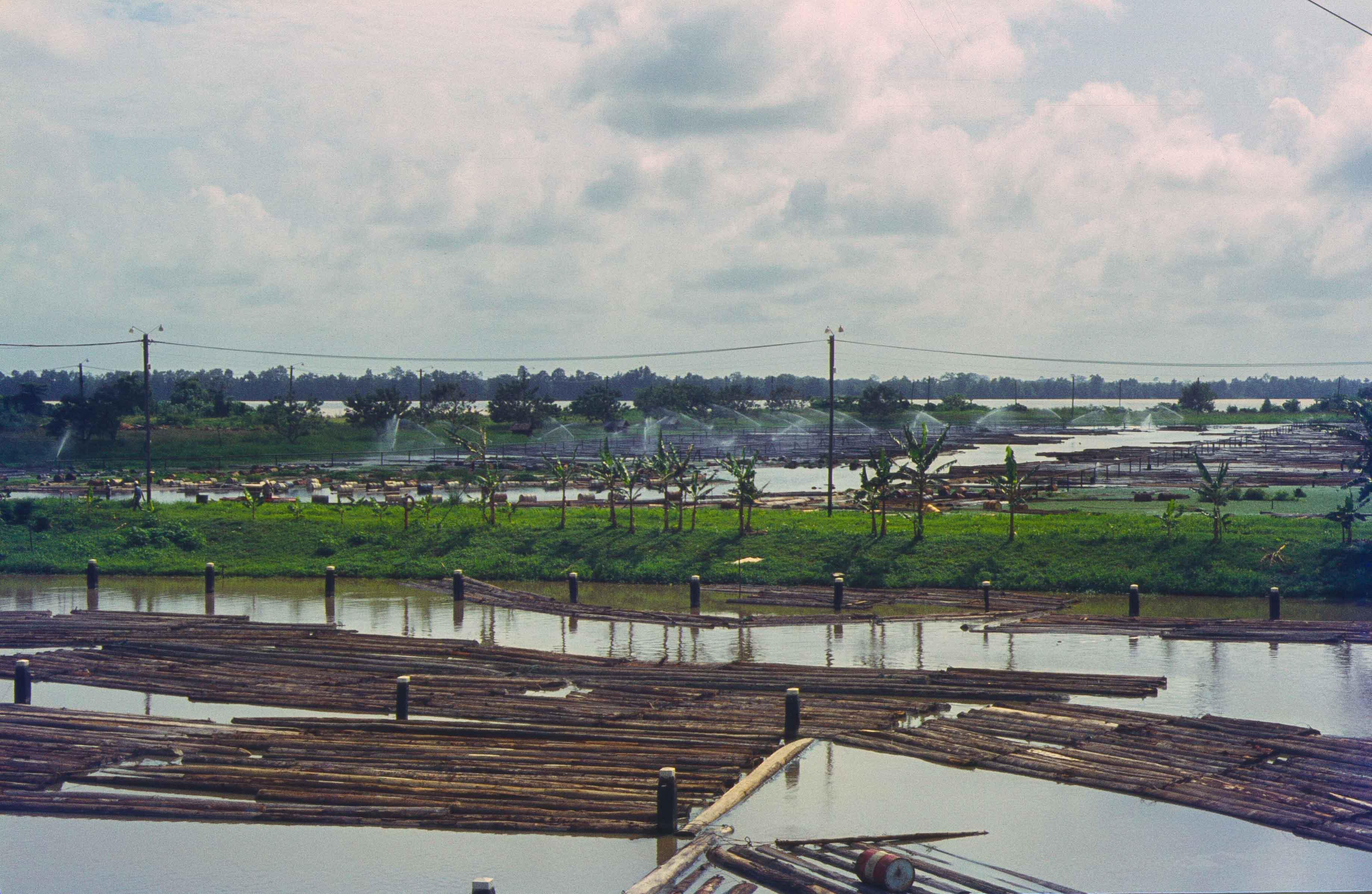 564. Suriname