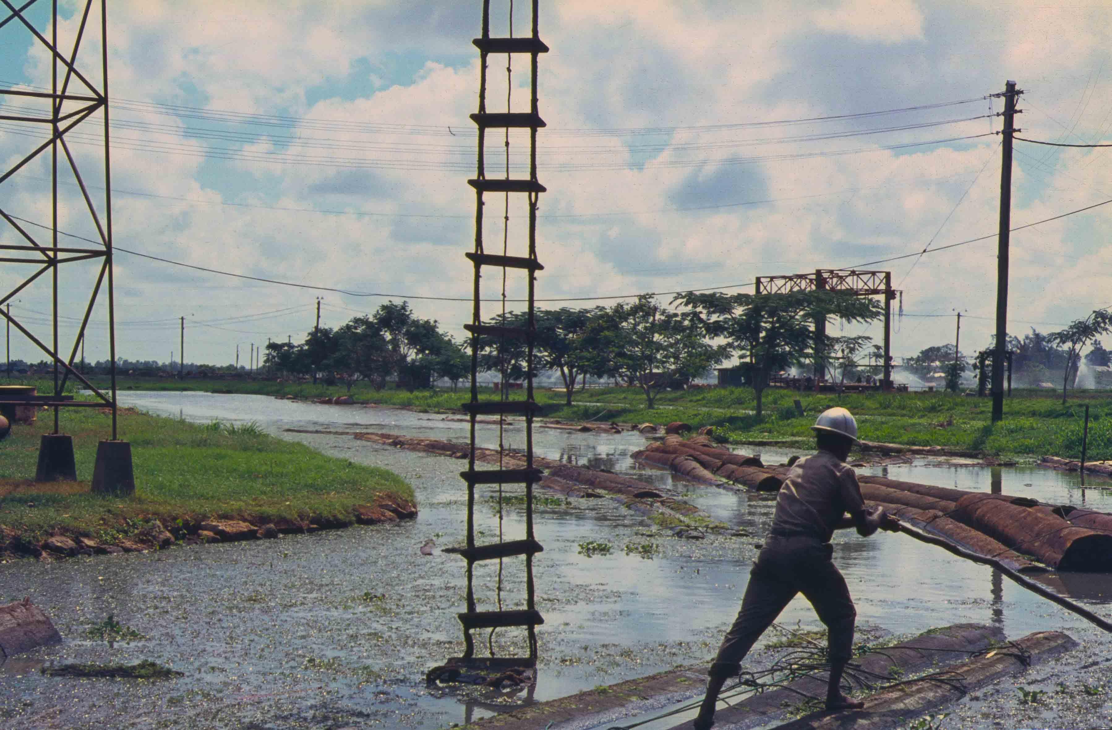 565. Suriname