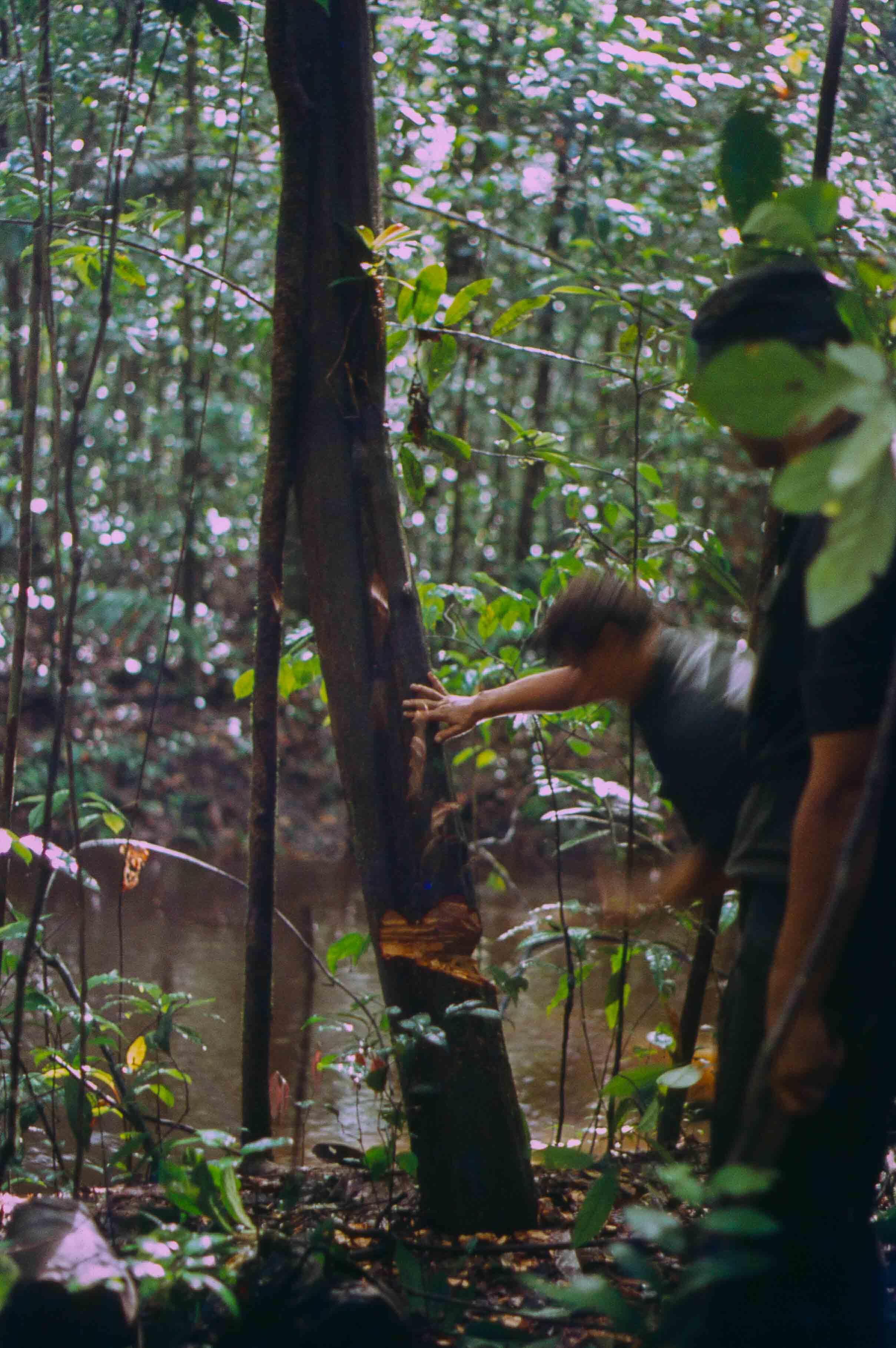 84. Suriname