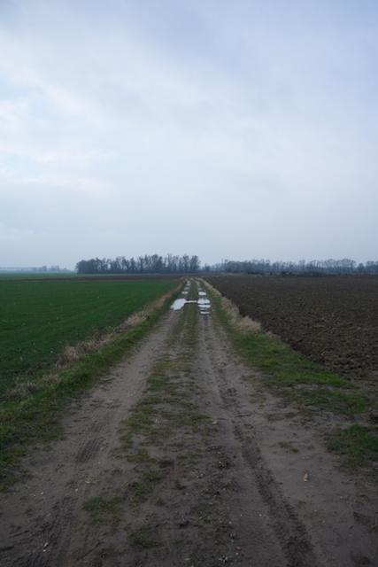 150. Landweg