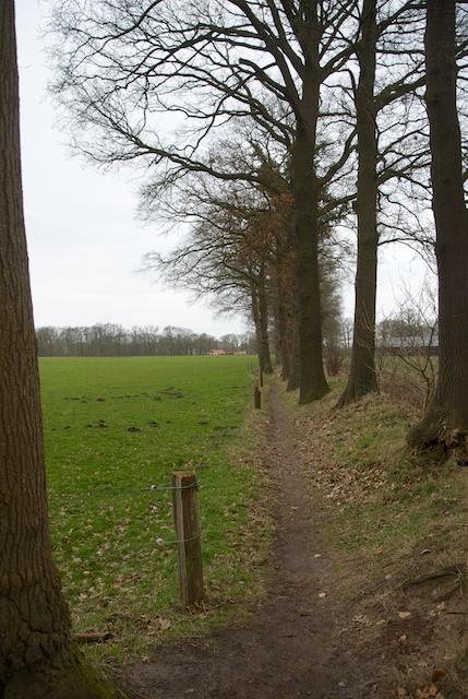22. Landschap
