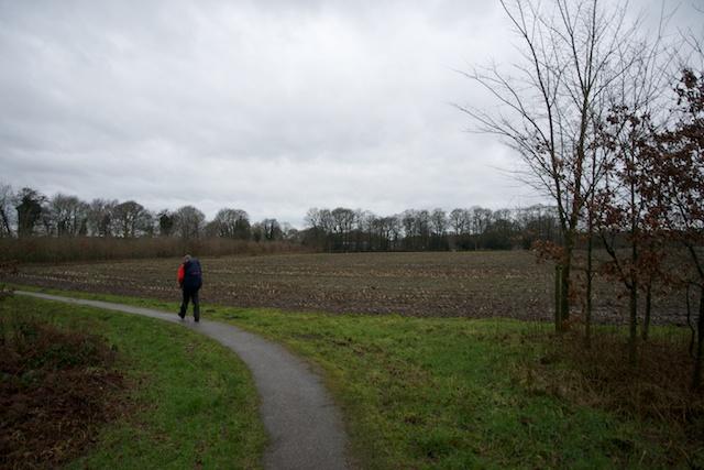 29. Landschap