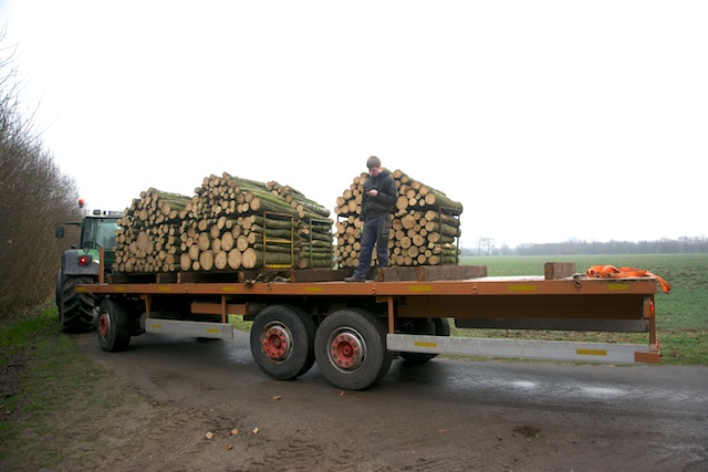 39. Hout