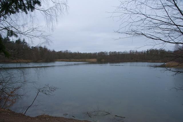 6. Het Hulsbeek