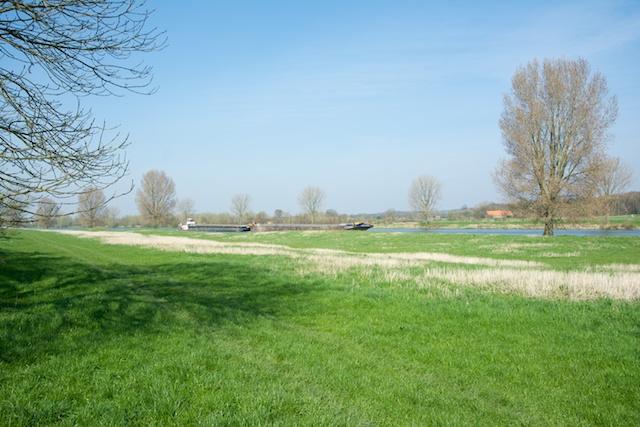 10. Maas