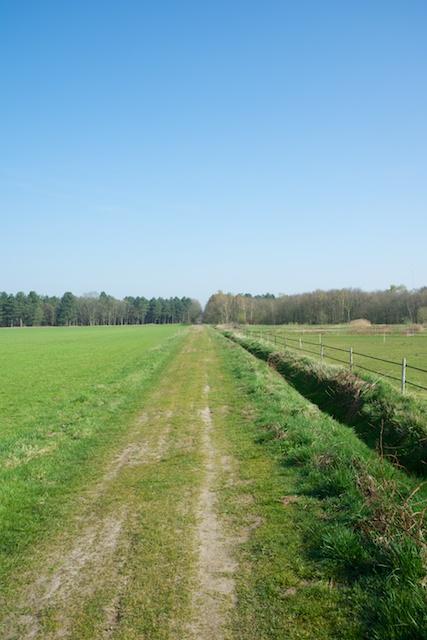107. Moorweg