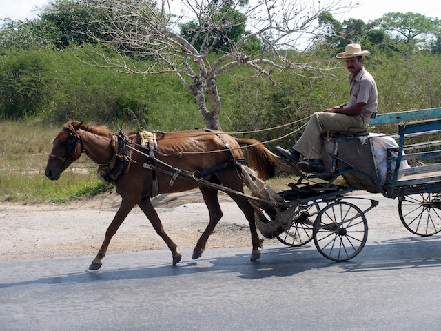 187. Transport