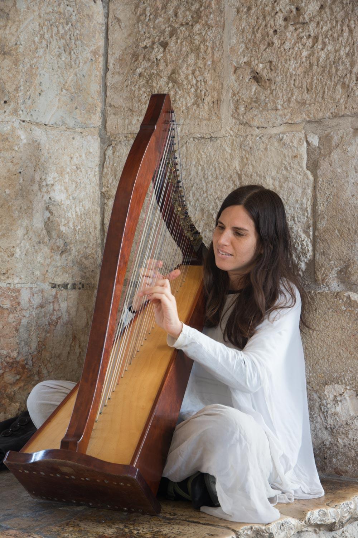 237. Harp