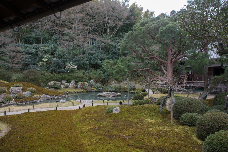 Karpers In Tuin : Japan maart 2017 wandel fiets en culturele avontuur verhalen