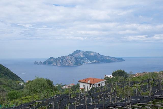 129. Capri