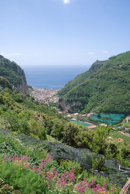 177. Amalfi