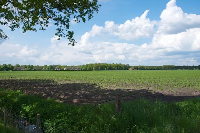 29. Landbouwgebied