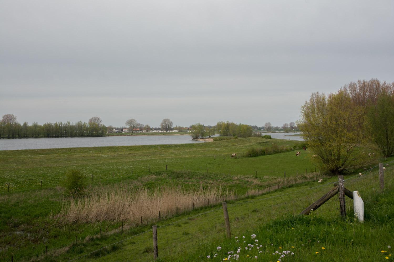 47. Maas