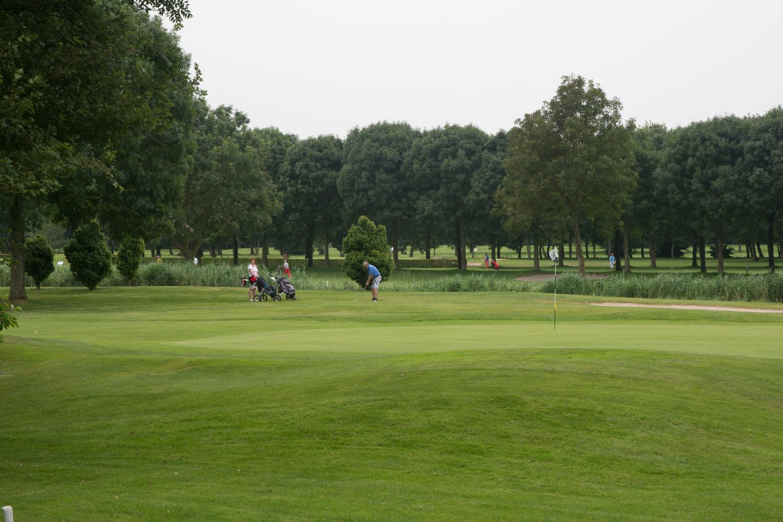 12. Golfbaan