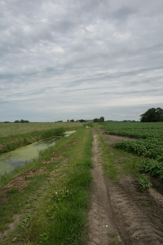 16. Boerenkarweg