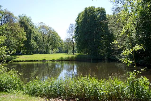 2. Haagse Bos