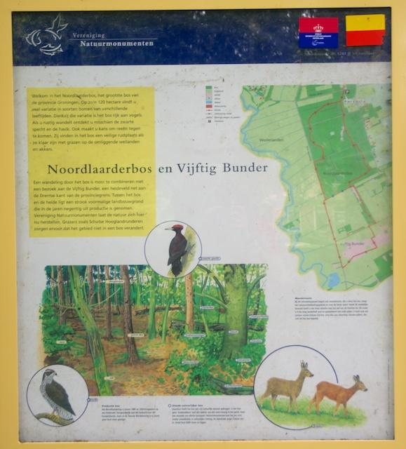 24. Noordlaarderbos