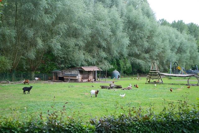 32. Hobbyboerderij