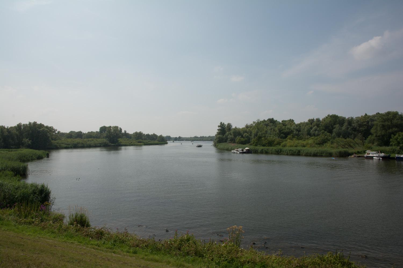 52. Biesbosch