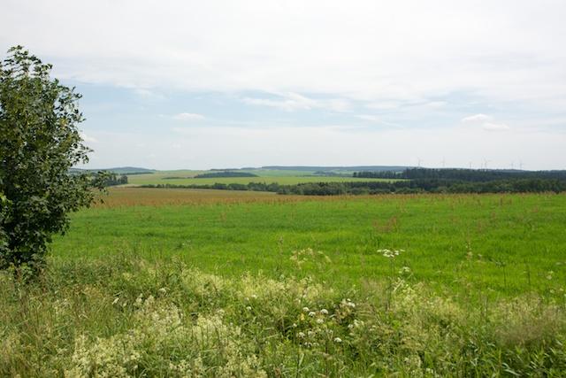 124. Landschap