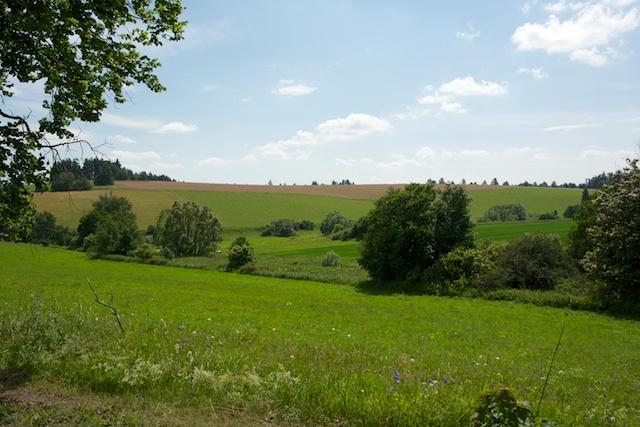 127. Landschap