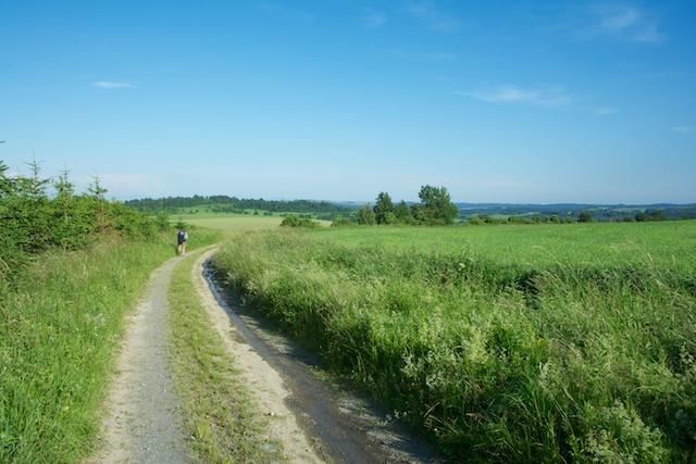 134. Landschap