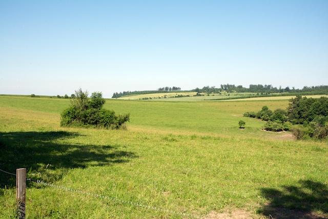 148. Landschap
