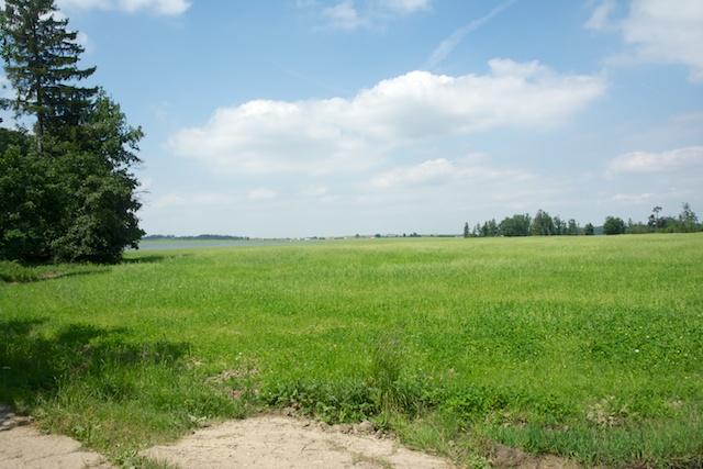 277. Landschap