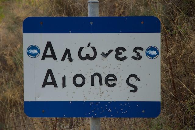 293. Alones