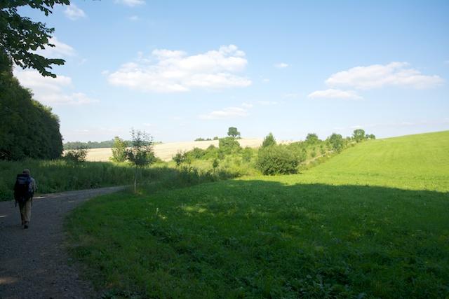349. Landschap