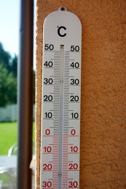 356. Thermometer