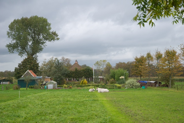014. Hobbyboerderij