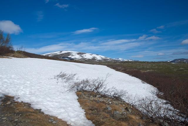 630. Sneeuw