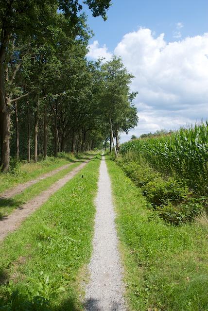 73. Landweg