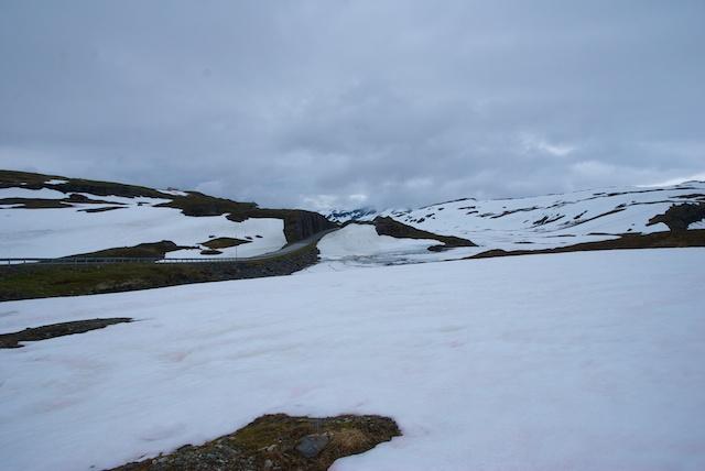 865. Sneeuwvlakte